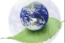 چالشهای زیستمحیطی لرستان؛ از تخریب گهر تا بلوطهایی که دود شدند