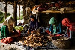 النساء في العشائر البختيارية / صور