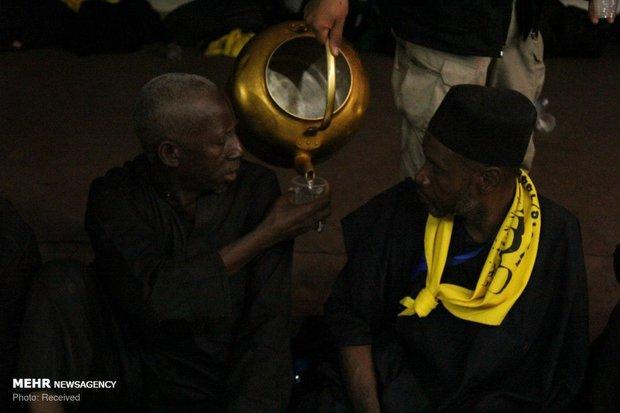 Nigerian Arbaeen pilgrims in Iraq