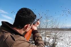 پروانه شکار پرنده در قم صادر نمیشود