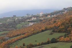 بیش از ۶ میلیون هکتار از عرصه های طبیعی خراسان رضوی دارای سند است