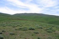 ۲۱۸ طرح مرتعداری در غرب مازندران تهیه شده است