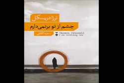ترجمه «چشم از تو برنمیدارم» چاپ شد/شاهدی که عذابوجدان گرفت