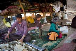 ۵۵۰ خانواده عشایر در ورامین زندگی می کنند