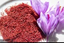 Saffron exports