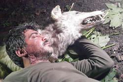 شکارچیان همسر یک محیطبان را کشتند/ آتش زدن کلبه