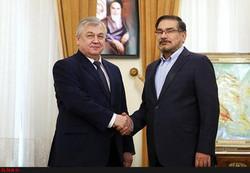 Putin's Syria envoy to meet Iran's Shamkhani