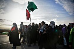 شوق زیارت امام هشتم (ع)در زائران پیاده/عشقی که هرسال تکرار می شود