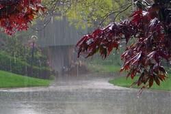 آغاز دوباره بارش ها در گیلان/ دمای هوا ۵ تا ۱۰ درجه کاهش می یابد