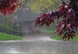 سامانه بارشی فردا به مرکزی وارد می شود/ پیش بینی بارش برف و آبگرفتگی معابر