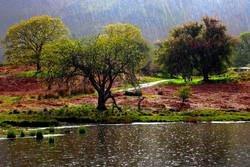 ثبت ۷۲.۷ میلی متر بارندگی در آبدانان