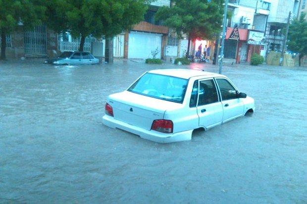 بارندگی باعث آبگرفتگی خیابانها در بوشهر شد