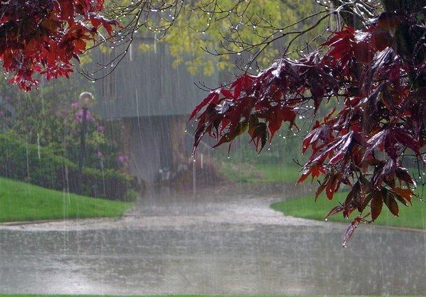 بارش شدید باران در مناطق جنوبی ایلام/ آماده باش در استان