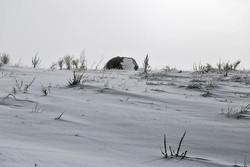 برف راه ارتباطی ۱۵ روستای شهرستان کوهرنگ را مسدود کرد