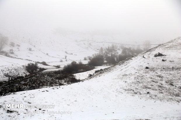 فلم/ فیروز کوہ میں شدید بارش اور برف باری