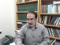 منابع شیعی به امام حسن کملطفی کردهاند/مظلومیت امام در پژوهشها