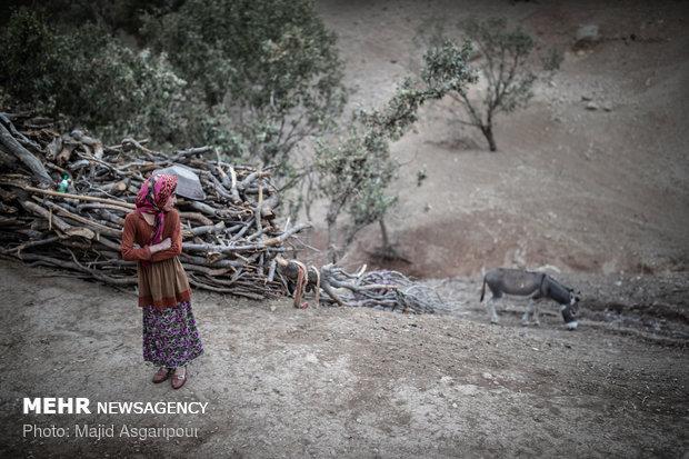 روستاییان از چارپایانی مانند الاغ و قاطر برای حمل و نقل استفاده میکنند.