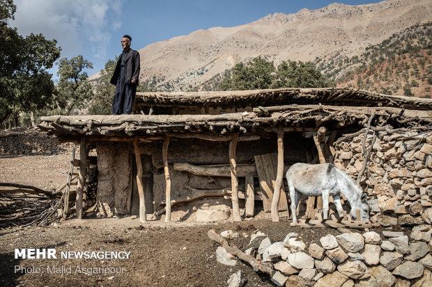 روستای پز از سه روستای علیا،وسطی و سفلی تشکیل شده است. پراکندگی خانه های این روستا روند انتقال امکانات را کند کرده است.