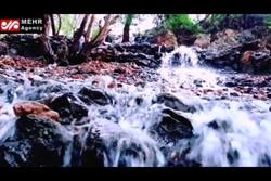 جاری شدن آبشارهای شیرکوه پس از نزدیک به ۲ دهه خشکسالی