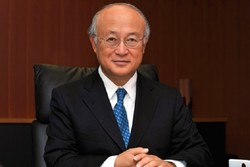IAEA chief Amano intends to step down: report