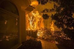 آتش در کالیفرنیا ۹ قربانی گرفت/ برقراری حالت فوقالعاده