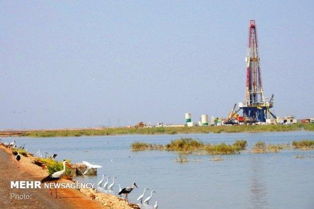 بررسی مغایرت های قانونی طرح ۲۸ مخزن نفت