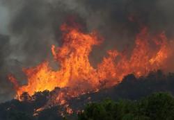 فلم/ کیلیفورنیا کے جنگلات میں لگی آگ سے تلفات میں اضافہ
