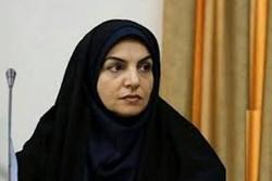 افزایش ۲برابری تعداد شرکتکنندگان یزدی در جشنواره فیلم رضوی