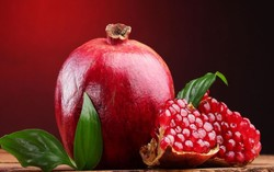 Tehran to host pomegranate festival