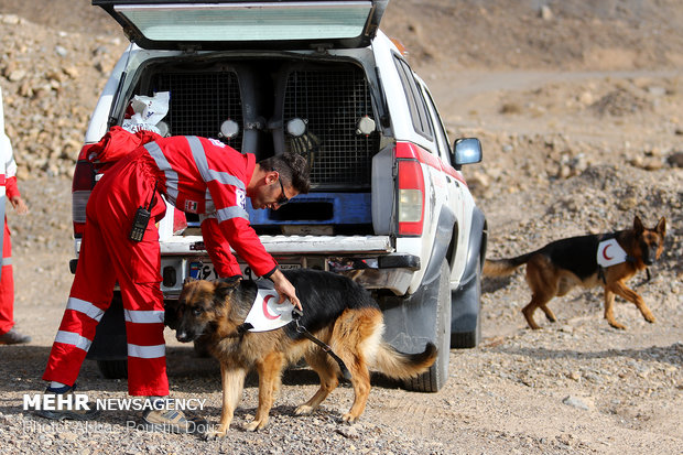 تیم آنست هلالاحمر در جستوجوی کودک ۲ ساله گمشده در قلعهنو