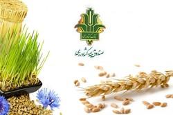 صندوق بیمه کشاورزی در استان زنجان زیانده است