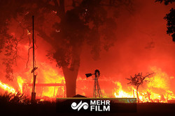 VIDEO: California wildfire lashes along freeway