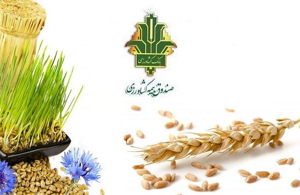طرح بیمه پایه محصولات کشاورزی در آذربایجان شرقی اجرا شد