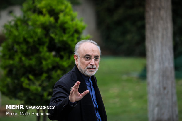 Iran's uranium enrichment at 24 tons after JCPOA: Salehi