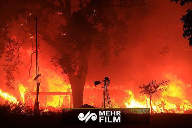 کیلیفورنیا میں سات روز سے لگی آگ میں ہلاکتوں کی تعداد 59 ہو گئی