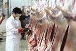 نظارت کامل دامپزشکی بر گوشتهای وارداتی
