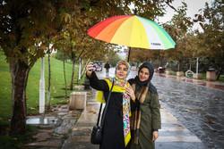 المطر في شوارع طهران المطلية بألوان الخريف / صور