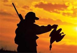 صدور مجوز شکار ۲۰۰ هزار پرنده دراستان تهران/ تیر خلاص محیط زیست به پرندگان پایتخت