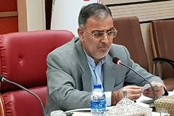 طرح پیشگیری از کشت خشخاش با جدیت در قزوین اجرا می شود