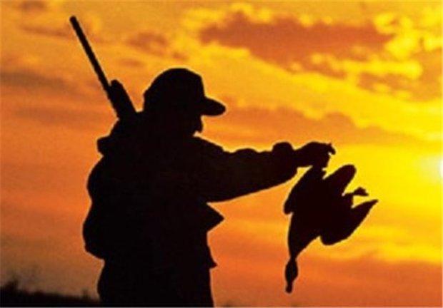 صدور مجوز شکار ۲۰۰ هزار پرنده در استان تهران