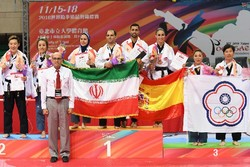 1 gold, 2 bronze added to Iran's tally at World Poomsae C'ships