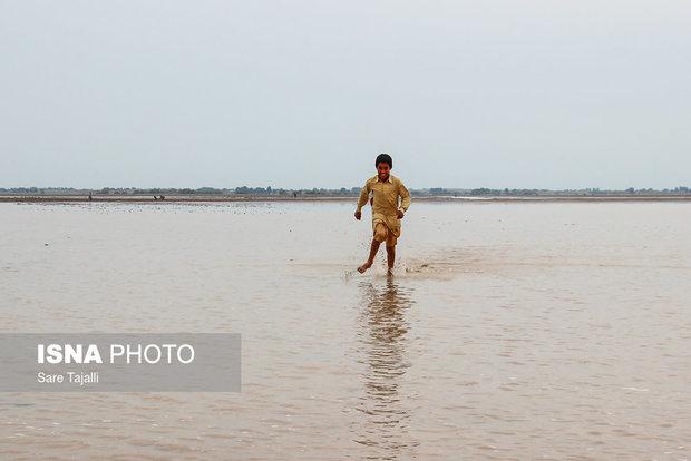 'Jazmourian wetland restoration, DOE's priority'