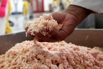 ۳ هزار کیلوگرم خمیر مرغ غیر بهداشتی در مانه وسملقان معدوم شد