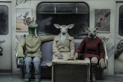 'Mr. Deer' wins award at Italy's Skepto Filmfest.
