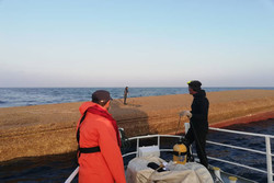 جزئیات سانحه لندینگ کرافت در حوالی جزیره ابوموسی