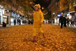 جمالية الخريف في تبريز/فيديو