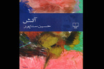 حسین سناپور «آتش» به پا کرد