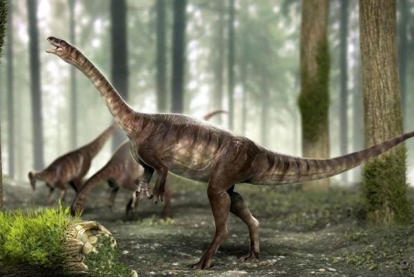 کشف بقایای دایناسور ۲۲۵ میلیون ساله در برزیل