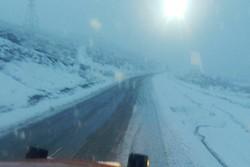 امدادرسانی به ۲۱۵ نفر در برف گردنه «زالیان»/ ۷۰ دستگاه خودرو رهاسازی شد