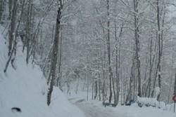 افزایش دمای هوا در شمال/ بارش برف و باران در شمال غرب